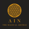AIN Logo
